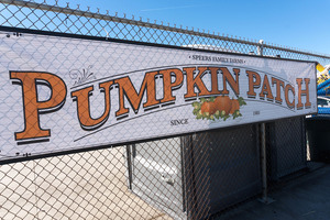 pumpkin_patch_01